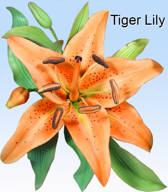 Tiger Lily Petal Cutters World Of Sugar Art
