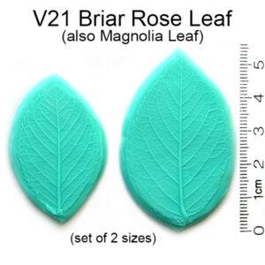 Briar Rose & Magnolia Leaf Veiners
