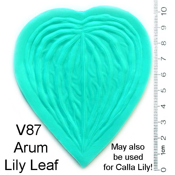 Arum Lily Leaf Veiner